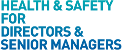Health & Safety for Directors icon